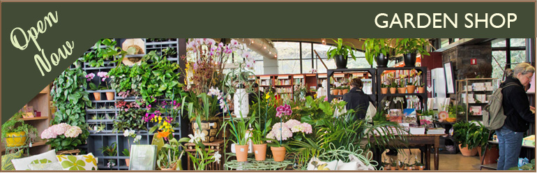Recently Refurbished Garden Centre Gift Shop - Thorngrove Garden Centre Dorset