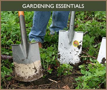 Thorngrove Gillingham - Where to buy essential gardening tools near Shaftesbury