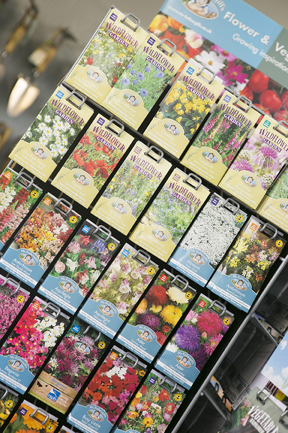 Wildflower Seeds for Sale - Thorngrove Garden Centre Shop