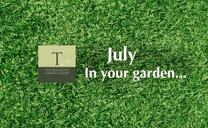 July…in your garden