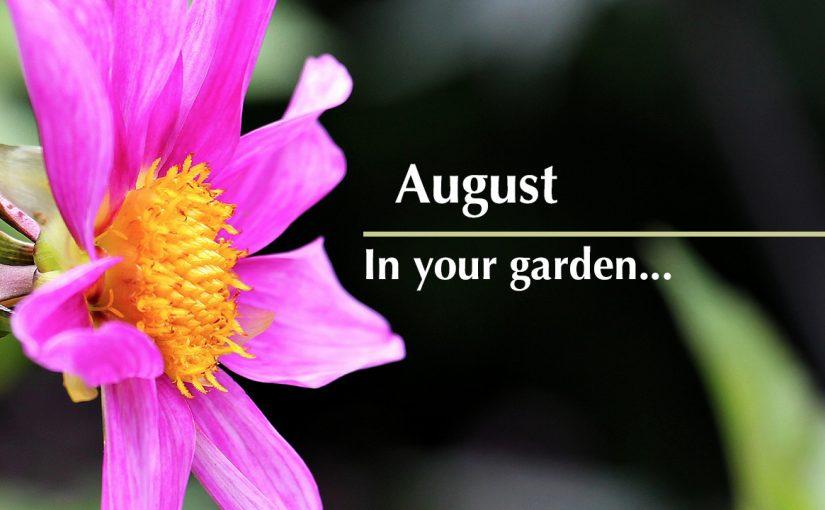 August…in your garden